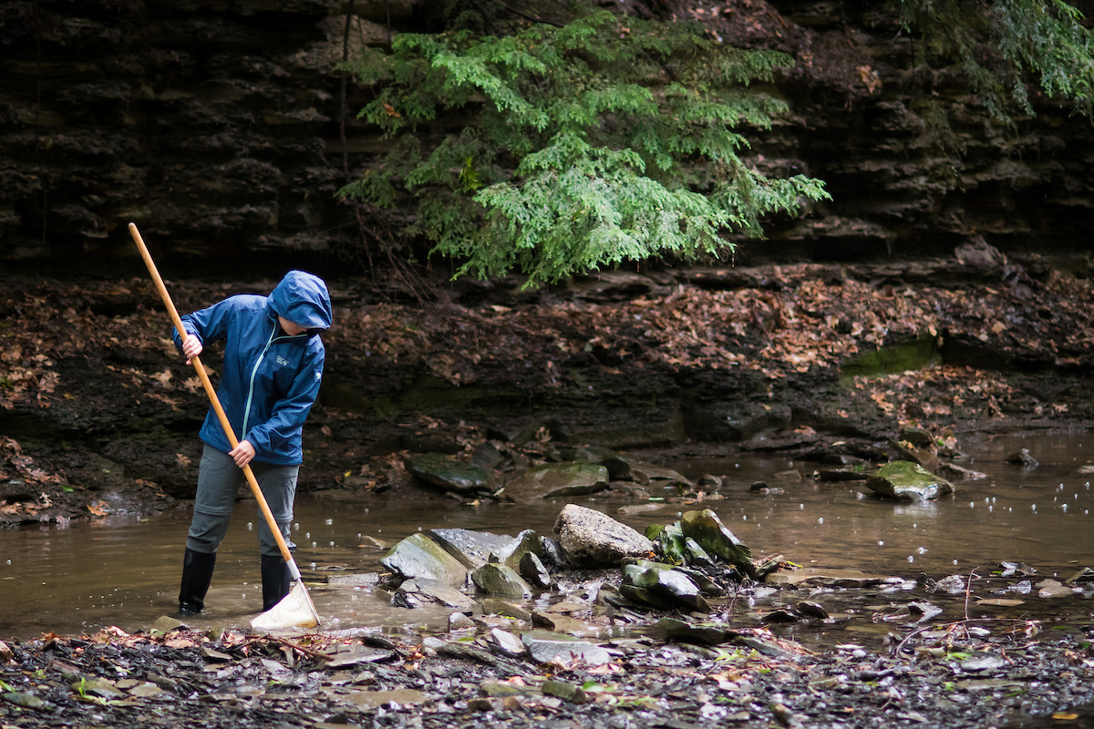 Creek Smart: Biological Stream Monitoring