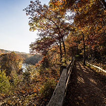 5 Leaf-Loving Hikes for Fall Color Viewing #cLEAFland