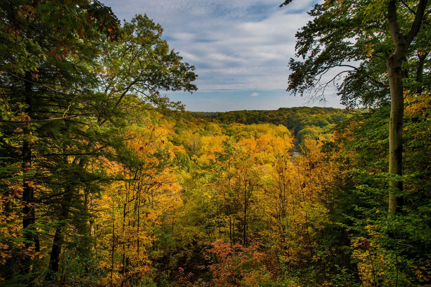 Celebrate Fall in Cleveland Metroparks