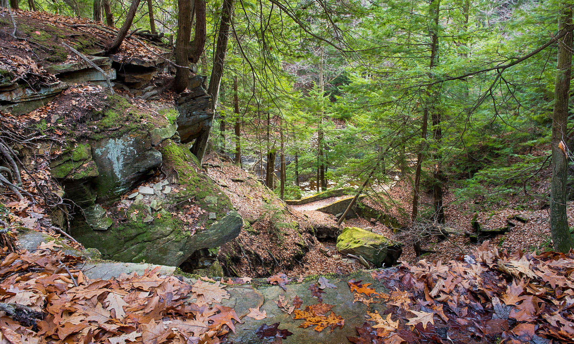 Leaf Covered Henry Church Rock in Fall at South Chagrin Reservation