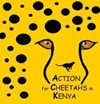 Action for Cheetahs in Kenya