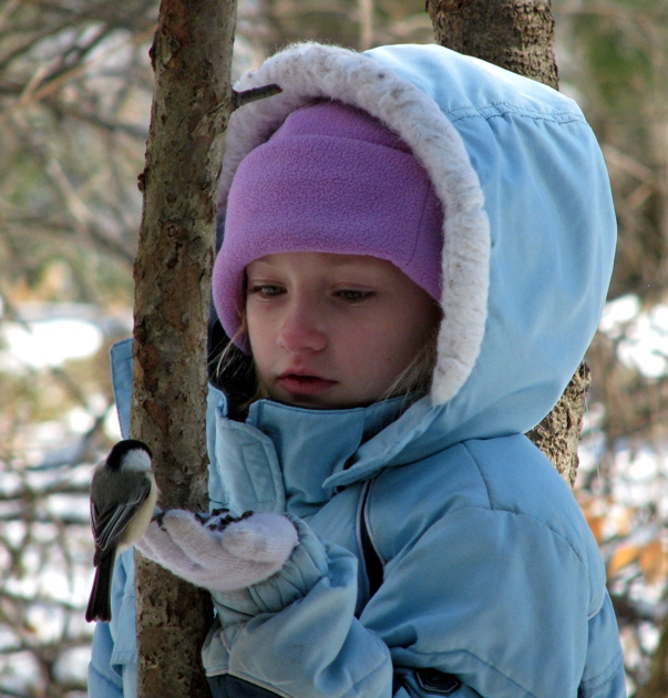 HAND FEED THE CHICKADEES, A 70-YEAR TRADITION AT  CLEVELAND METROPARKS BRECKSVILLE NATURE CENTER