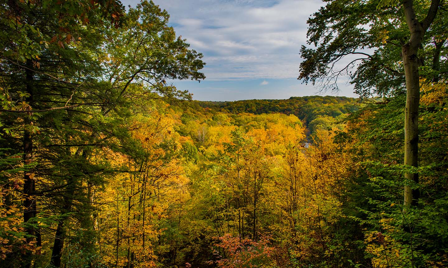 Tinkers Creek Gorge Scenic Overlook