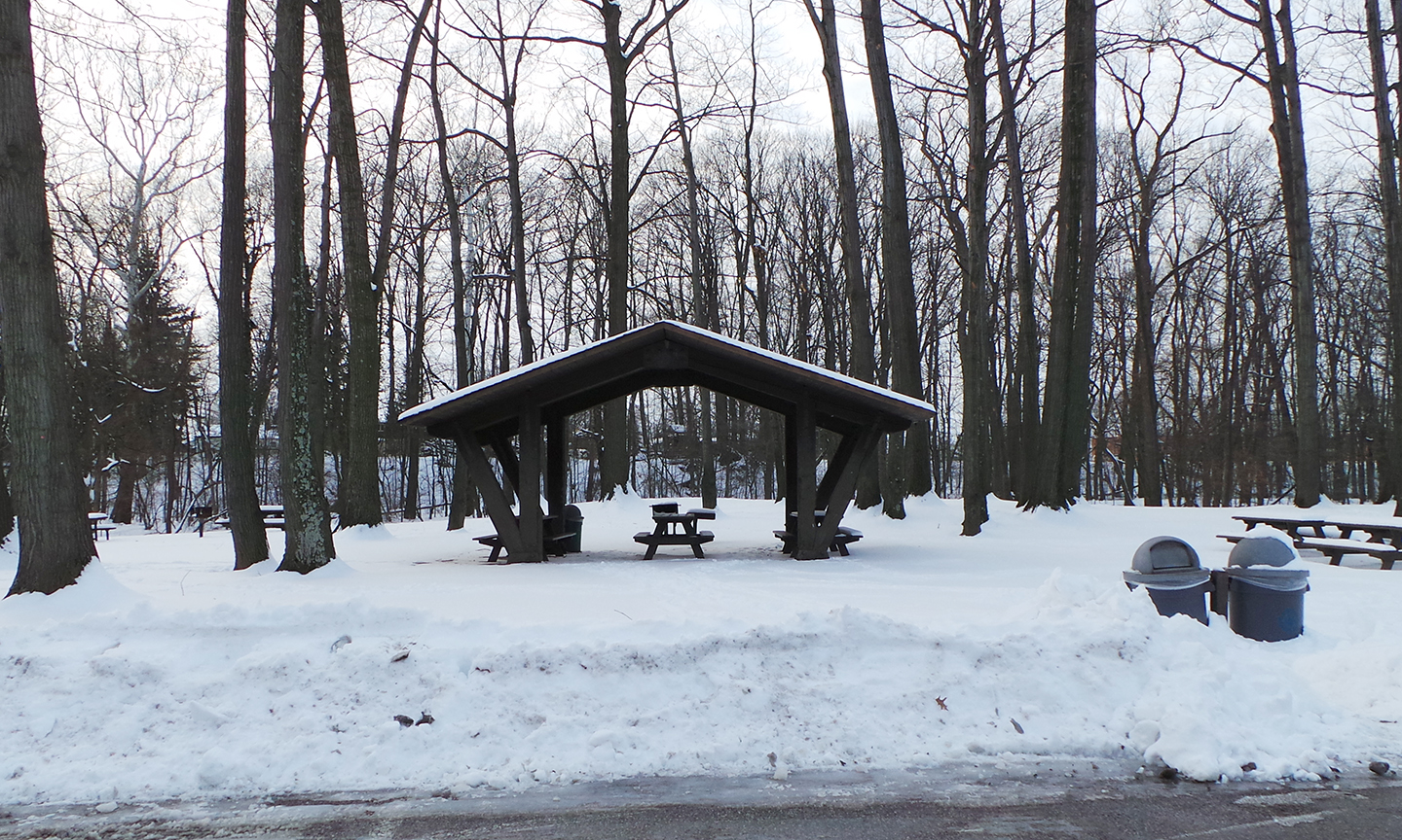 Lower Fern Hill Picnic Area