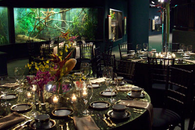 MAKE YOUR HOLIDAY PARTY EXTRAORDINARY WITH UNIQUE FACILITY RENTALS AT CLEVELAND METROPARKS AND THE ZOO