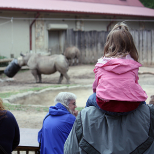 Cleveland Metroparks Zoo marks 20 year attendance milestone in 2012