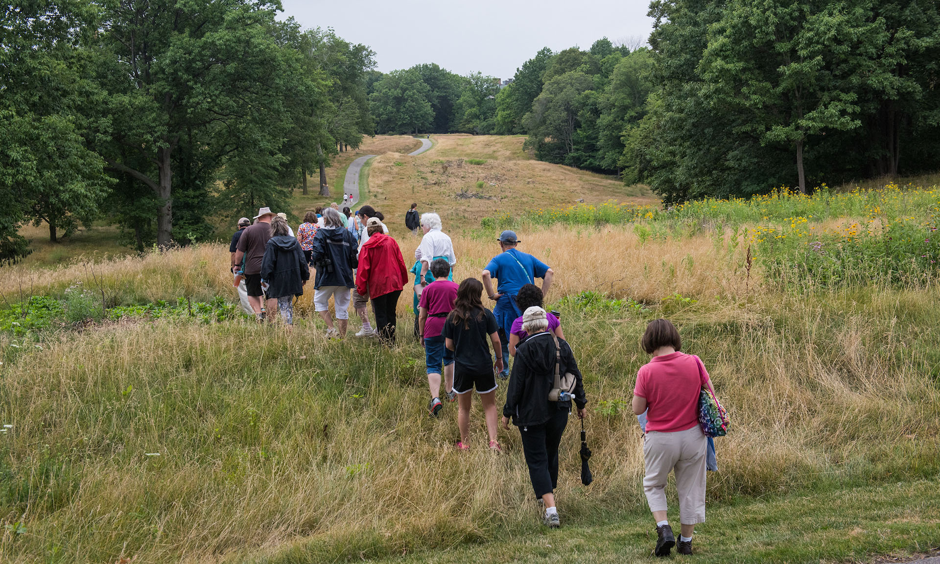 A Group Walking through the Grass at Acacia Reservation
