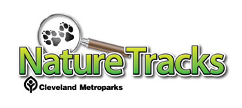 NatureTracks Logo