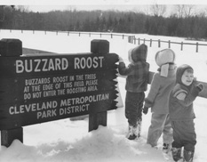 Spotting the Buzzards - A Grand Tradition