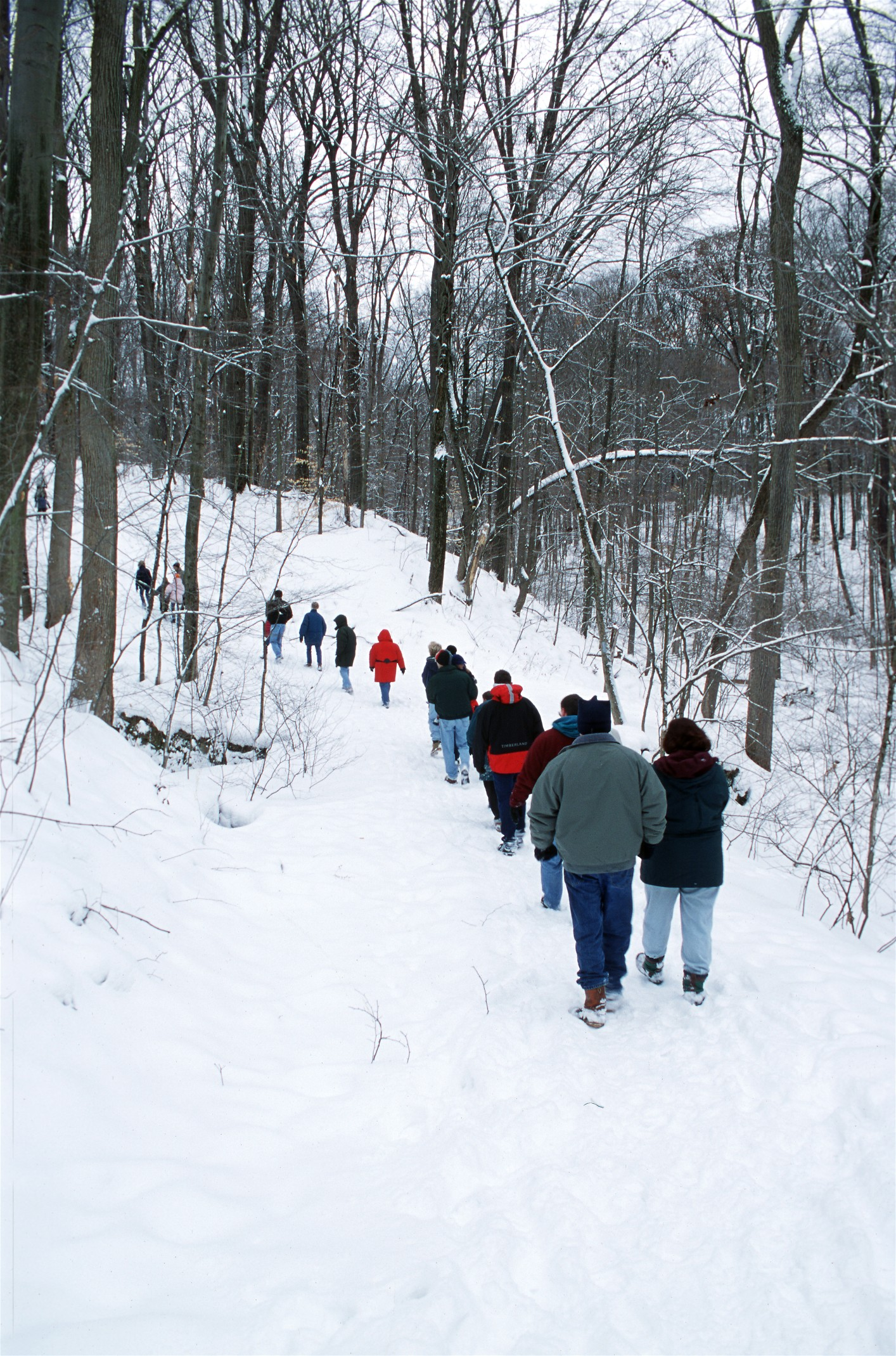 COME HIKING IN A WINTER WONDERLAND WITH CLEVELAND METROPARKS