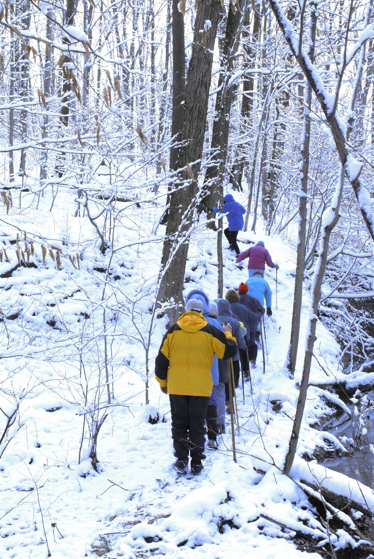 "THIS FEBRUARY TAKE A ""HEART HEALTHY HIKE"" IN CLEVELAND METROPARKS"