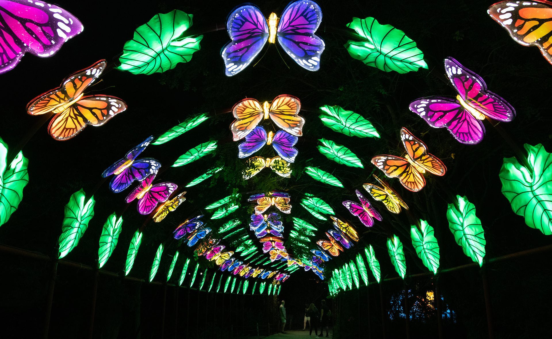 Cleveland Metroparks Extends Asian Lantern Festival Through September 20