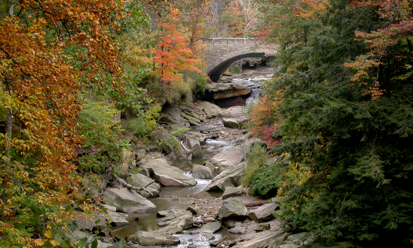 Chippewa Creek Gorge Scenic Overlook