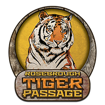 Rosebrough Tiger Passage Opens with a Roar at Cleveland Metroparks Zoo