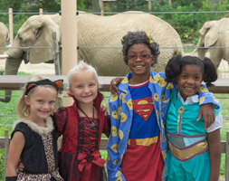 BOO AT THE ZOO AT CLEVELAND METROPARKS ZOO IS SO CLOSE IT