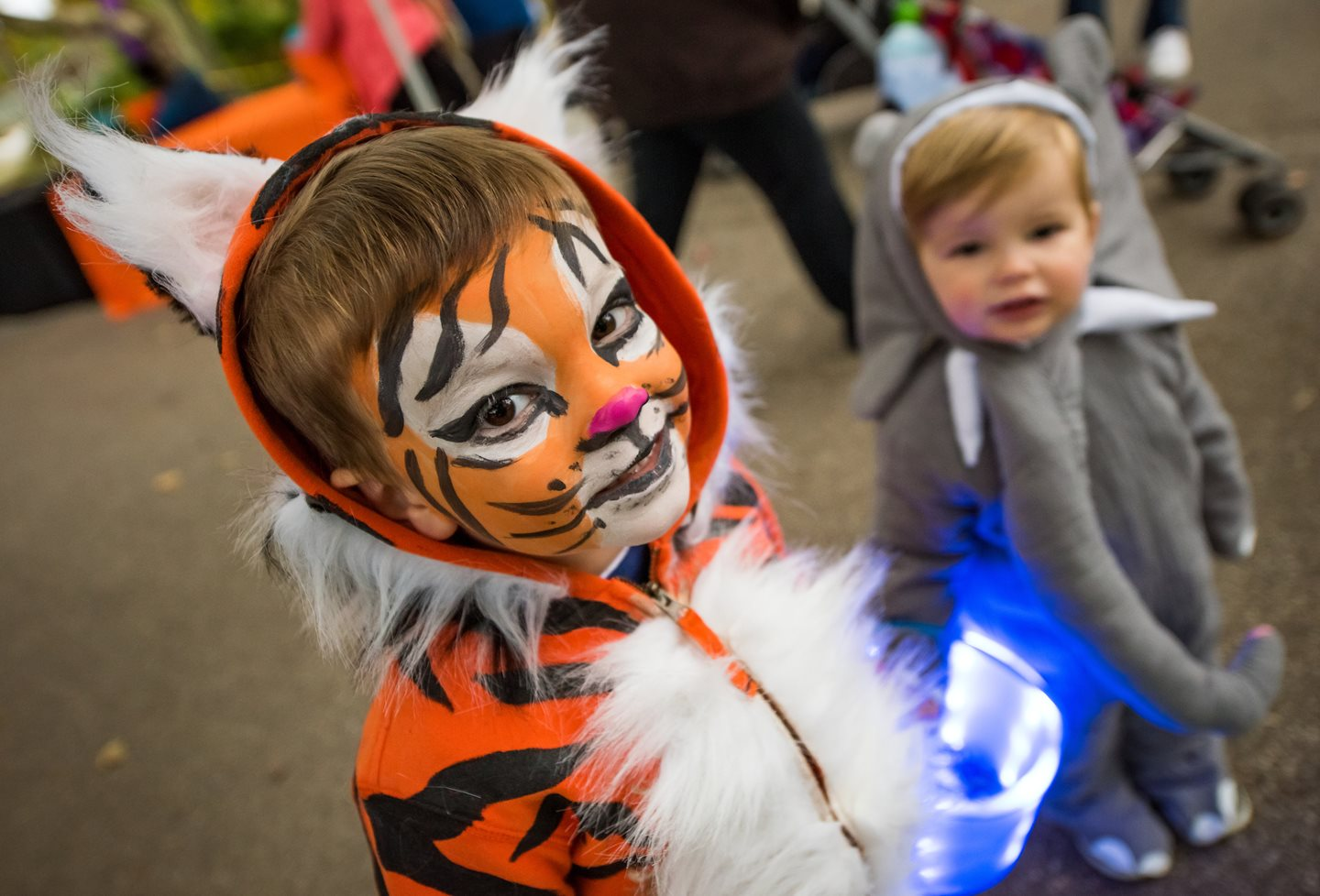 There's a Halloween Celebration for Everyone at Cleveland Metroparks Zoo this October