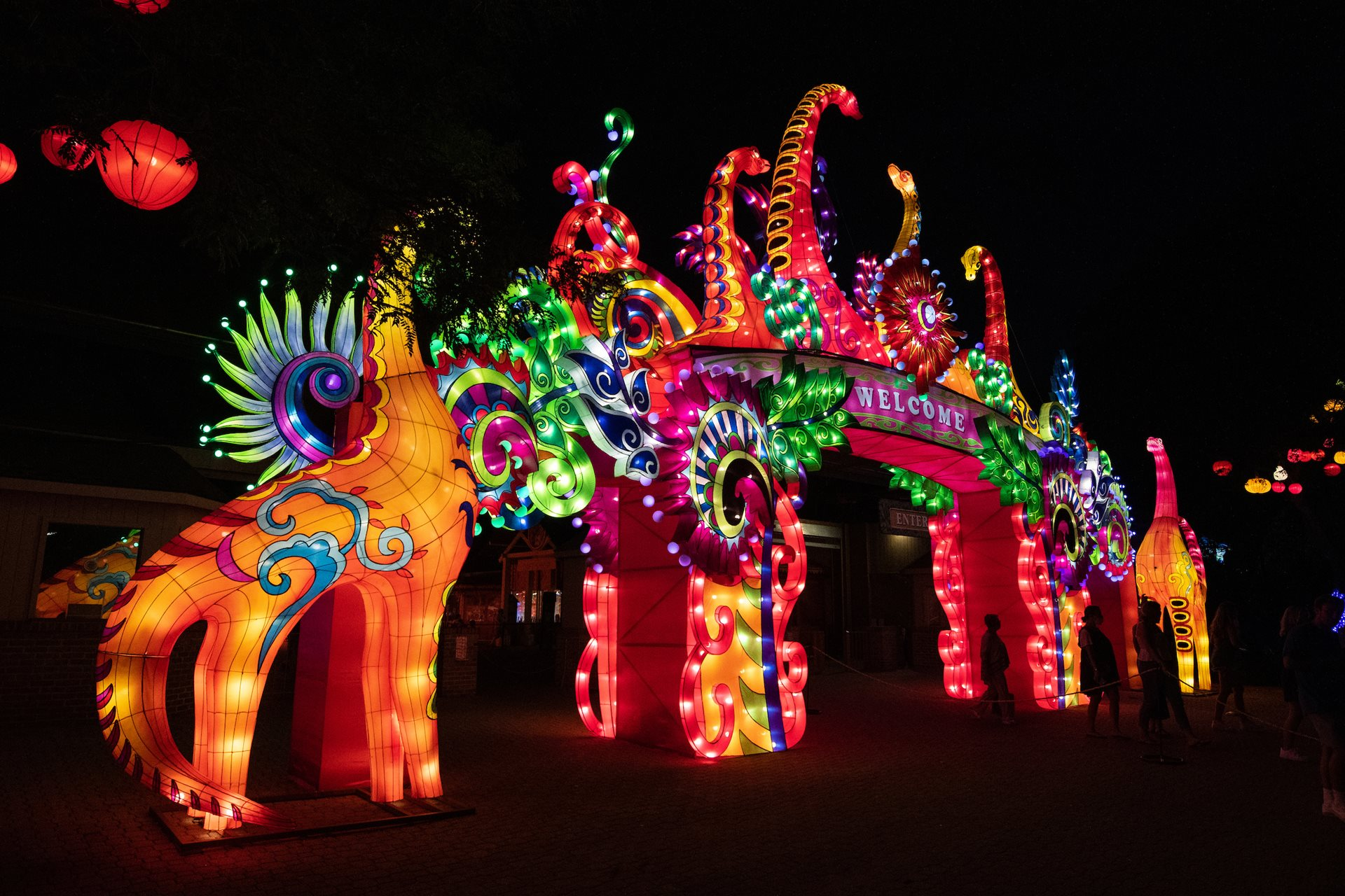 Cleveland Metroparks Zoo Offers Limited Drive-Through Experience at Asian Lantern Festival
