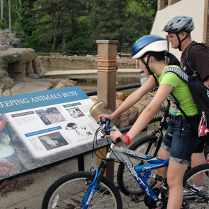 Pedal through Cleveland Metroparks Zoo on your bike during Wild Ride