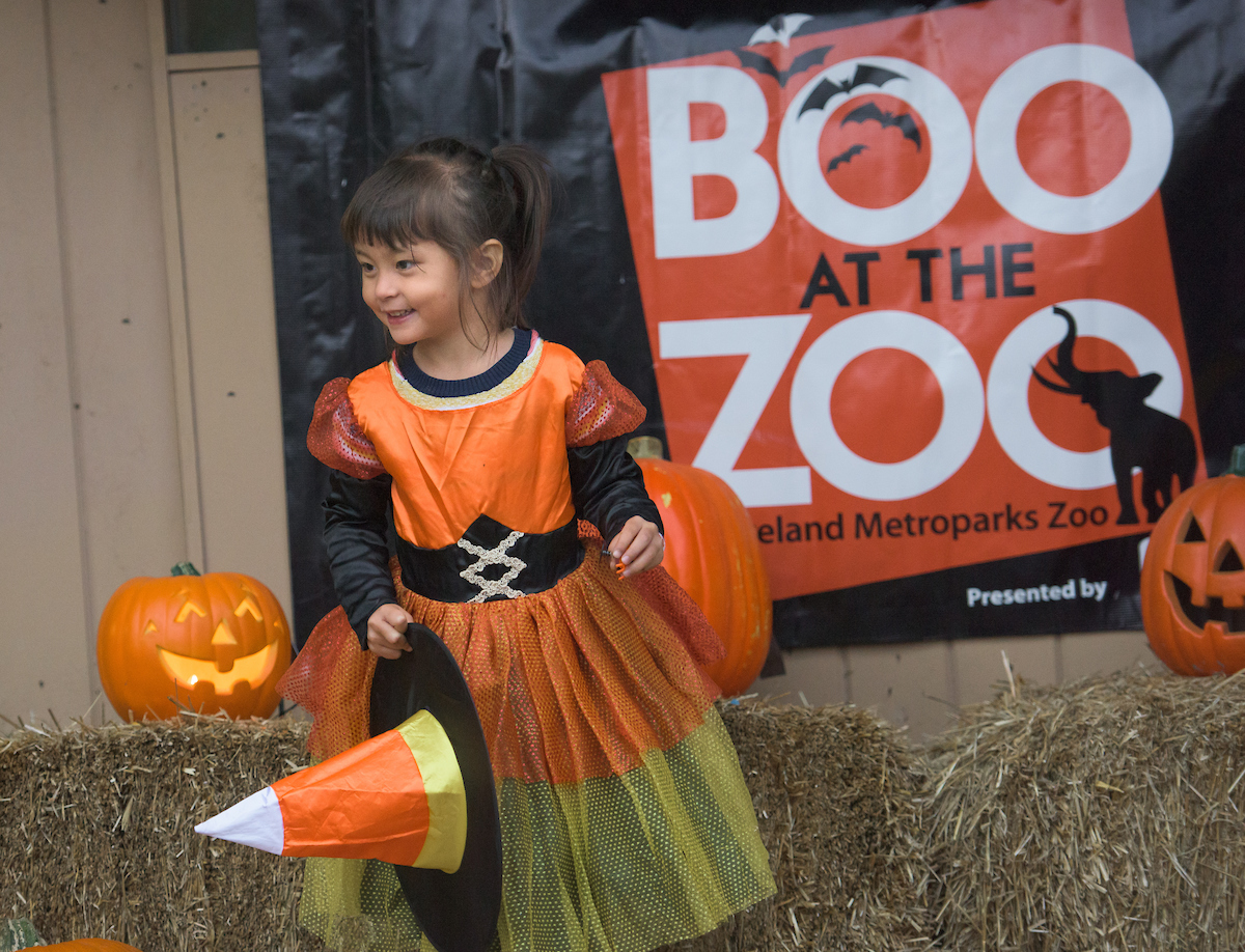 Boo at the Zoo presented by Citizens Bank