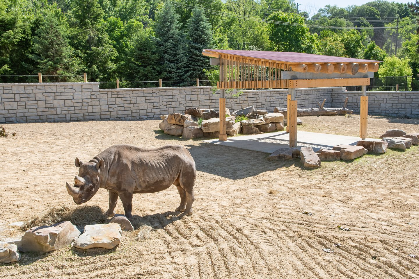 Cleveland Metroparks Zoo Announces Reopening Plan