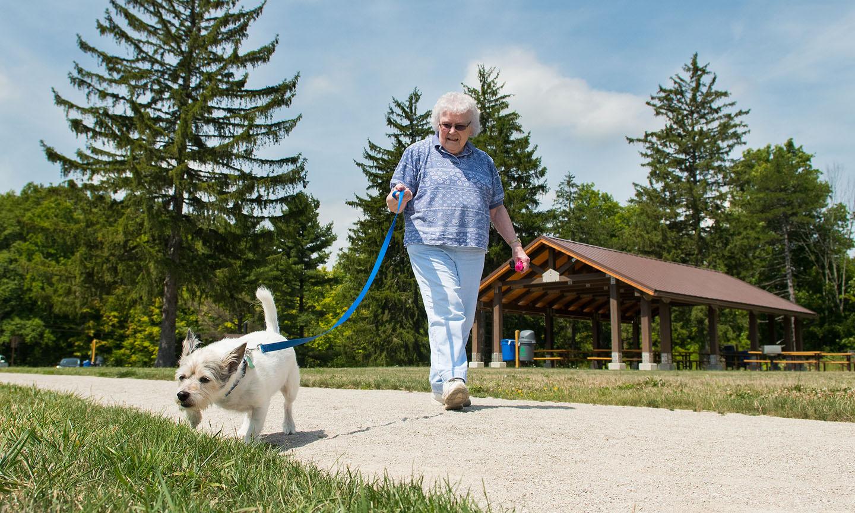 Dog Park Brecksville Ohio