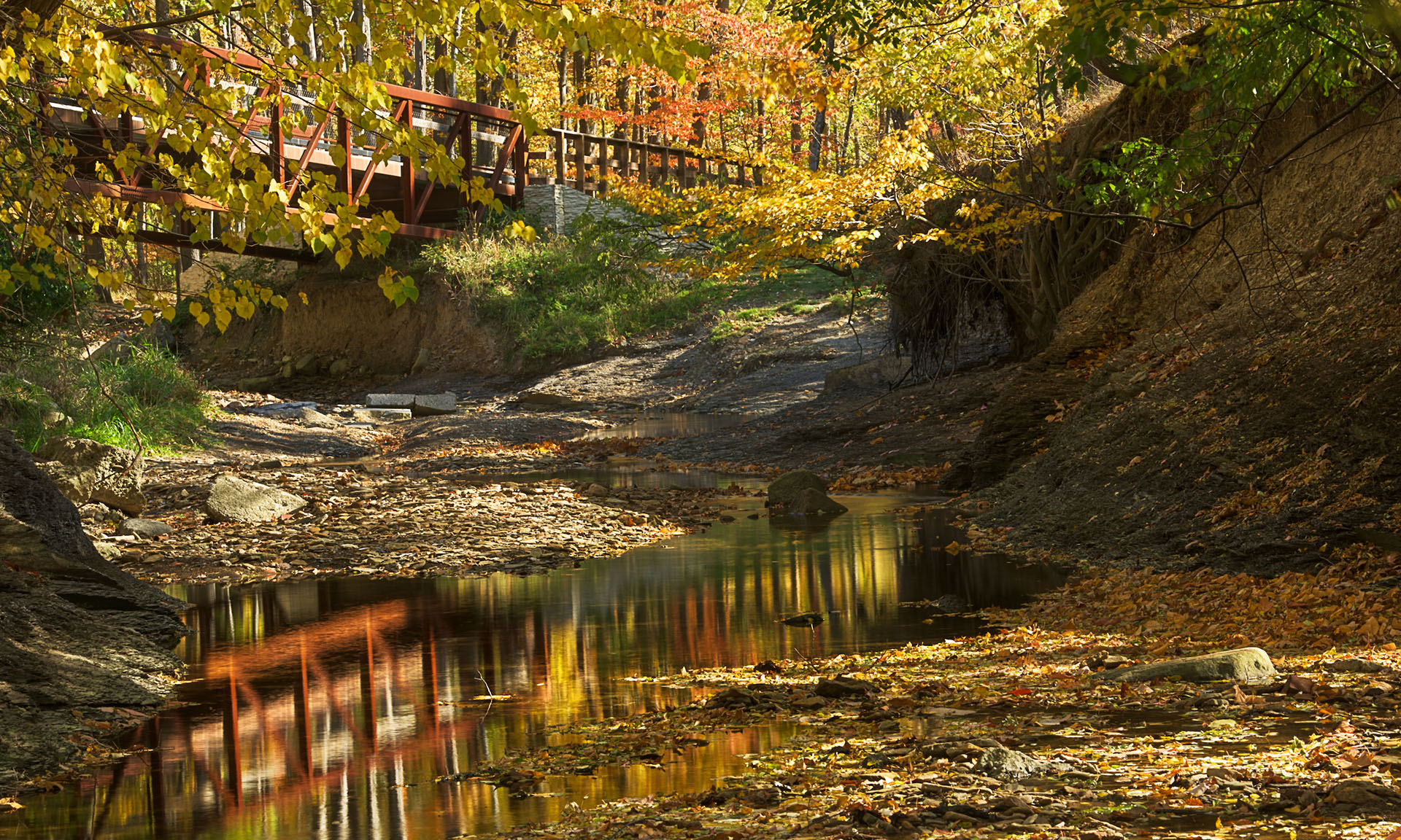 West Creek in the Fall