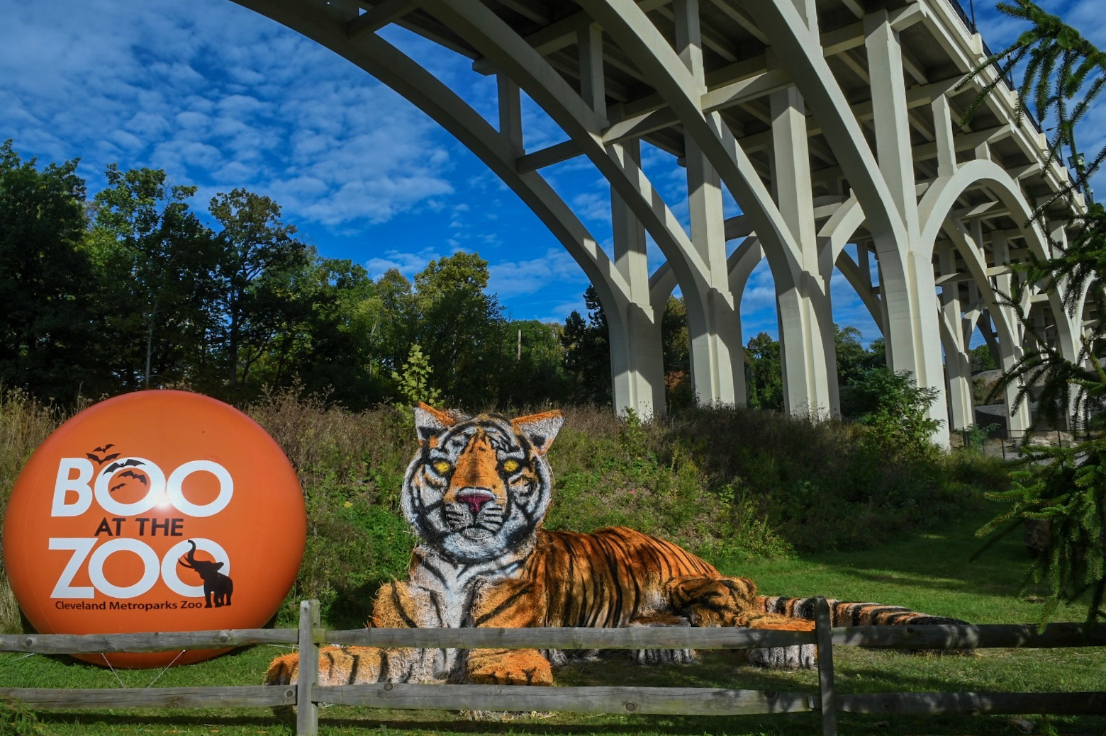 Experience Boo at the Zoo, Cleveland's Favorite Halloween Tradition