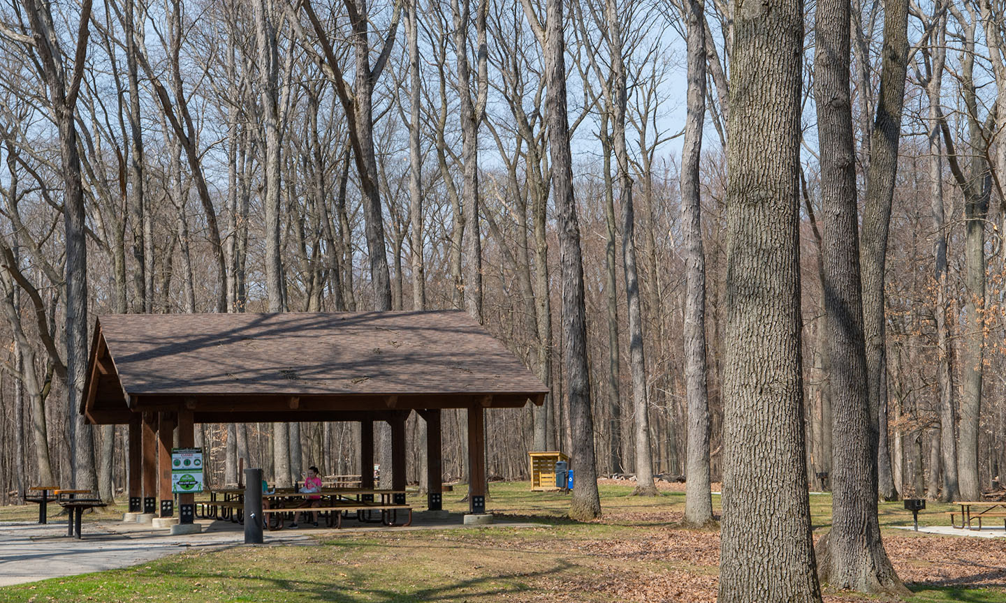 Egbert Picnic Area